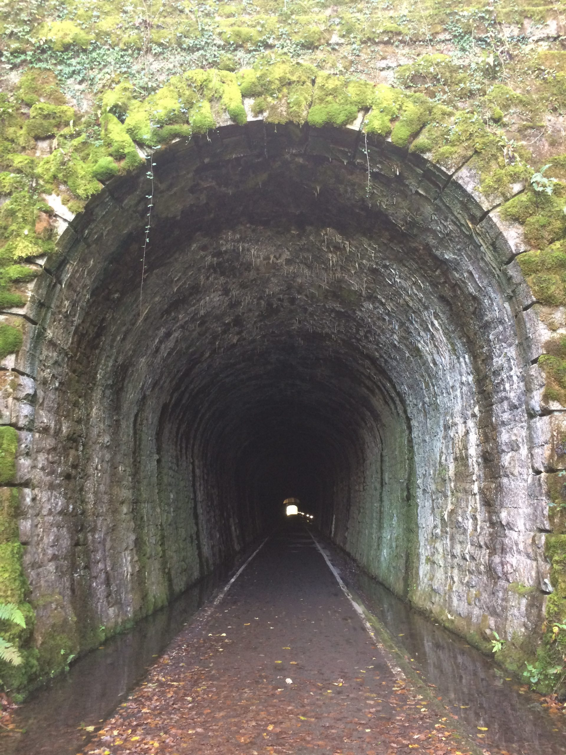 July update – light at the end of the tunnel